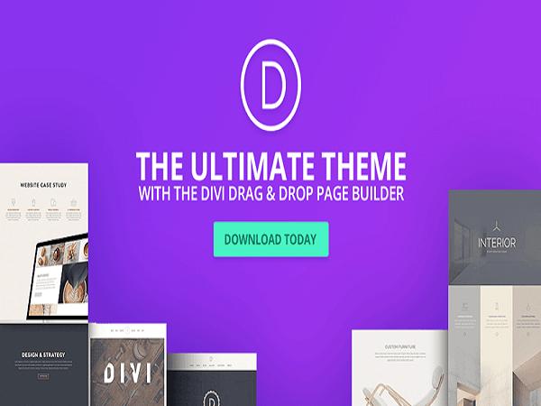 Download Divi Multipurpose Premium WordPress Theme